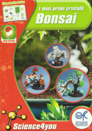 bonsai.png